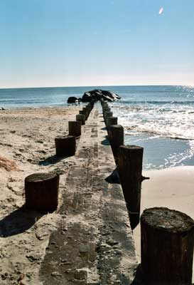 Beach groin